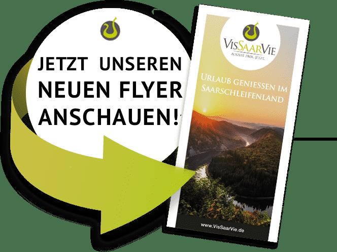 Flyer download VisSaarVie